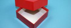 Kryoboxen 133x133x50 mm hoch